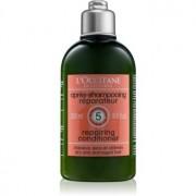 L'Occitane Hair Care balsam pentru par uscat si deteriorat 250 ml