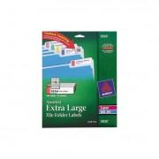 X-Large 1/3-Cut File Folder Labels W/trueblock, 15/16 X 3 7/16, We/asst, 450/pk
