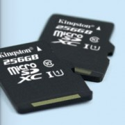 Memorija micro SD 256GB Kingston Class 10 UHS-I Card, SDC10G2/256GB