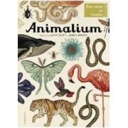 Animalium - Katie Scott Jenny Broom