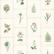 Tapet Oxford II - Botanica Roz