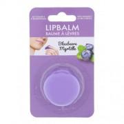 2K Lip Balm балсам за устни 5 гр за жени Blueberry