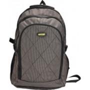 New Era School bags men 30 L Backpack(Brown)