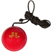 GENERIC Hanging Ball for Cricket Shot Practice and Knocking