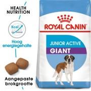 15 kg Giant Junior Active Royal Canin Hondenvoer