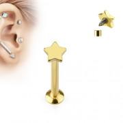 Helix piercing ster goud kleurig 6 mm