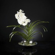 Aranjament floral VANDA