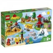 Конструктор Лего Дупло - Животни по света, LEGO DUPLO Town, 10907