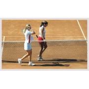 Fileu tenis regulamentar - fir 2.5 mm