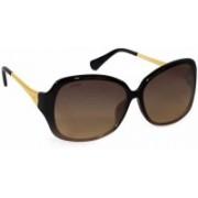 Titan Retro Square Sunglasses(Brown)