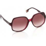 Boss Orange Over-sized Sunglasses(Violet)