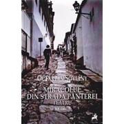 Teatru-Miracolul din Strada Panterei vol I/Octavian Soviany