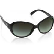Spykar Over-sized Sunglasses(Blue, Grey)