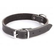 Dingo Obroża skórzana podszyta filcem 2,5x65cm czarna