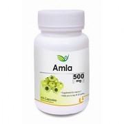 Biotrex Amla Herbal Dietary Supplement - 500mg Rich source of Vitamin C (60 Capsules)