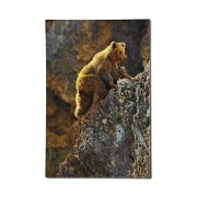 Grizzly Bear and Cub Climbing (12x18 Premium Acrylic Puzzle, 130 Pieces)