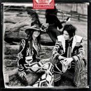 The White Stripes - Icky Thump (0634904027124) (1 CD)