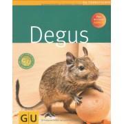 Alexandra Beißwenger - Degus (GU Tierratgeber) - Preis vom 11.08.2020 04:46:55 h