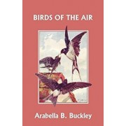Birds of the Air (Yesterday's Classics), Paperback/Arabella B. Buckley