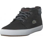 Lacoste Ampthill Terra 318 1 Blk/gry, Skor, Sneakers & Sportskor, Chukka sneakers, Lila, Herr, 44