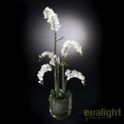 Aranjament floral elegant PLANT NEW PHALENOPSIS, 135cm 1141129.95