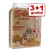 Greenwoods Weilandhooi 3 kg + 1 kg gratis! - Wilde appel 4 kg