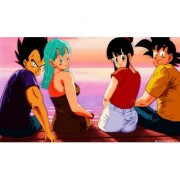 vegeta and goku with wifes sticker poster|dragon ball z poster|anime poster|size:12x18 inch|multicolor