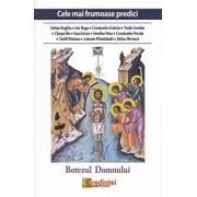Cele mai frumoase predici. Botezul Domnului/***