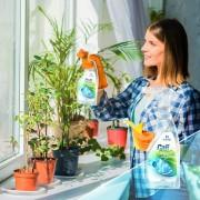 CALIGREEN NATURAL GLASS CLEANER - produs de curatat geamuri BIO