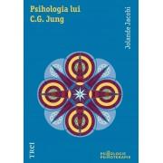 Psihologia lui C.G. Jung. O introducere in ansamblul operei (eBook)