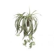Planta artificiala, Chlorophytum, verde