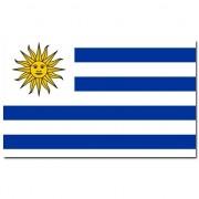 Geen Vlag Uruguay 90 x 150 cm
