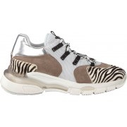 Clic! Witte Clic! Lage Sneakers Cl-9855