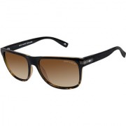 David Blake Brown Wayfarer Gradient Polarised UV Protected Sunglass