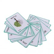 Baoblaze Kids Flash Cards Educational Learning Picture & Word Card Flashcards Trees - 23 Pieces