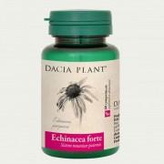 Echinacea Forte comprimate Dacia Plant