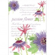 Fresh Scents Doftpåse Passion Flower
