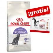 Royal Canin 4 / 10 kg pienso + 4 x 85 g sobres ¡gratis! - 4 kg Indoor 27 + sobres Instinctive