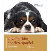 Dog Expert Cavalier King Charles Spaniel Dog Expert Book