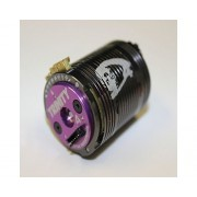 Trinity D4 Modified Brushless Motor (4.0T)
