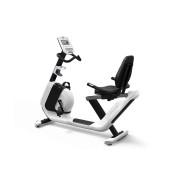 Bicicleta Fitness Cu Spatar Horizon Comfort R