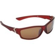 Hrinkar Sports Sunglasses(Brown)