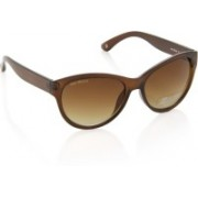 Joe Black Cat-eye Sunglasses(Brown)
