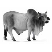 Taur Brahman L - Animal figurina