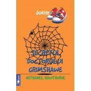 Secretul doctorului Grimshawe (eBook)