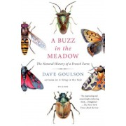 A Buzz in the Meadow: The Natural History of a French Farm, Paperback