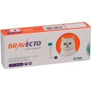 BRAVECTO Spot on Cat 250mg 2.8-6.25kg x 1 pipeta MSD