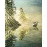 Komar Indulgence of Beauty Vlies Fotobehang 200x250cm 2-banen