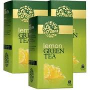 LaPlant Lemon Green Tea - 75 Tea Bags (Pack of 3)