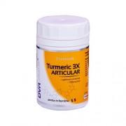 Turmeric 3x Articular 120cps Dvr
